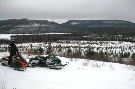 Overlooking Moose Lake