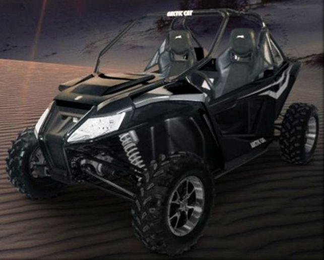 2012 Arctic Cat Wildcat?