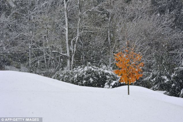 Snow storm wallops east coast, snowmobilers rejoice