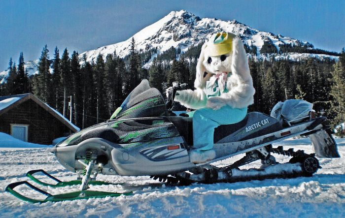 TGIF: Sept. 20, 2013 the Arctic Cat Bunny
