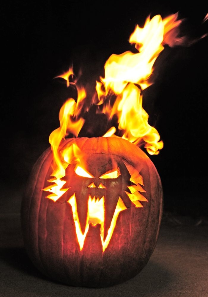 Arctic Cat Halloween Pumpkin from ArcticInsider
