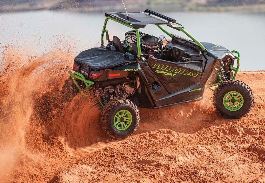 2016 Arctic Cat Wildcat Sport Limited roosting.
