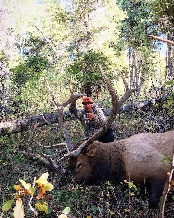 Do you even know anything about Elk?