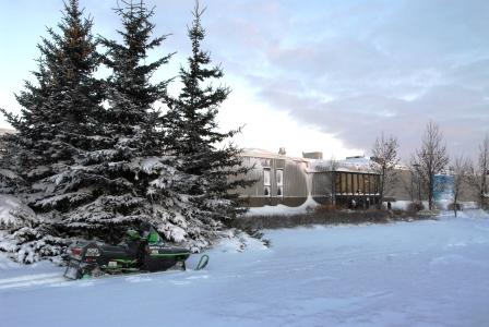 Arctic Cat in Thief River Falls