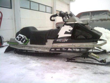 One-Lunger Arctic Cat by Matt
